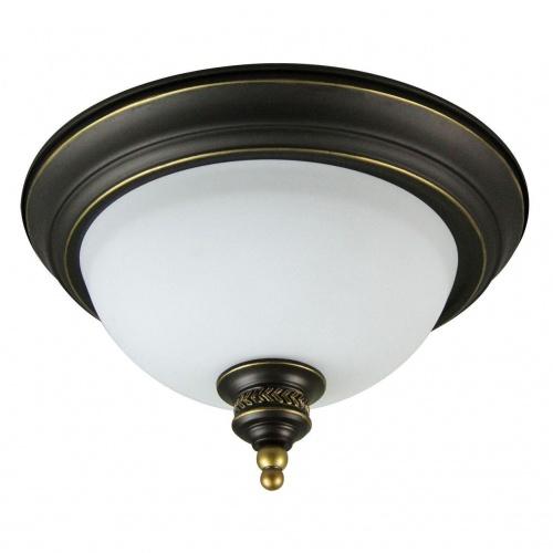 Потолочный светильник Arte Lamp Bonito A9518PL-2BA