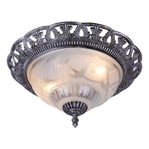 Потолочный светильник Arte Lamp Piatti A8001PL-2SB