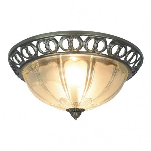 Потолочный светильник Arte Lamp 16 A1306PL-2AB