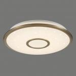Потолочный светодиодный светильник Citilux СтарЛайт CL70343R