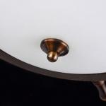 Потолочный светильник Maytoni Frigate ARM624-03-R