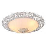 Потолочный светильник Arte Lamp Fleece A4554PL-2WG