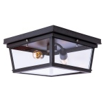 Потолочный светильник Loft IT Loft3110-2C