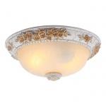 Потолочный светильник Arte Lamp Torta A7101PL-2WG