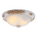 Потолочный светильник Arte Lamp Torta A7102PL-2WG