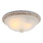 Потолочный светильник Arte Lamp Torta A7122PL-2WG