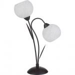 Настольная лампа Lussole Bagheria LSF-6294-02