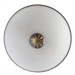 Потолочный светильник Arte Lamp Windsor White A3777PL-2AB